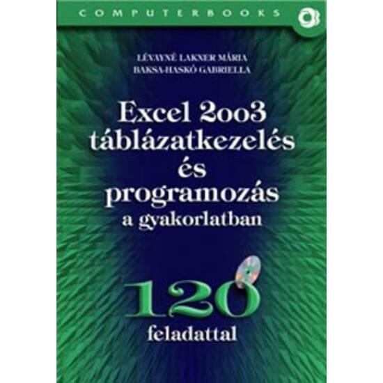 Excel 2003 táblázatkezelés és programozás a gyakorlatban - 120 feladattal, CD-vel